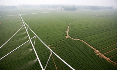 http://www.theguardian.com/environment/2014/jun/24/insecticides-world-food-supplies-risk